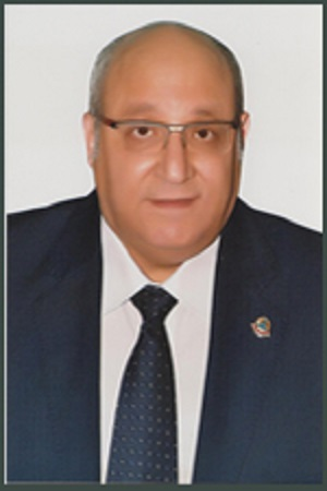 Prof. Ezzat Abdel WAHAB